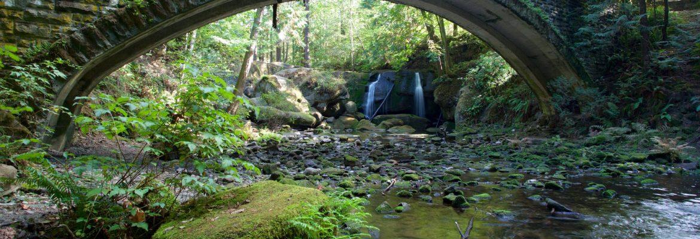 Whatcom Falls Park, Bellingham,Washington, USA