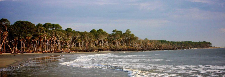 Hunting Island,South Carolina, USA
