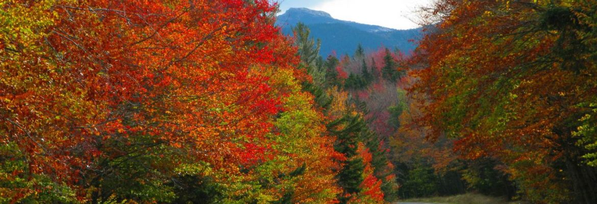 Kancamagus Highway, Conway, New Hampshire, USA