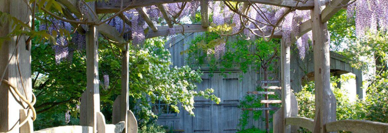Tangled Garden, NS, Canada