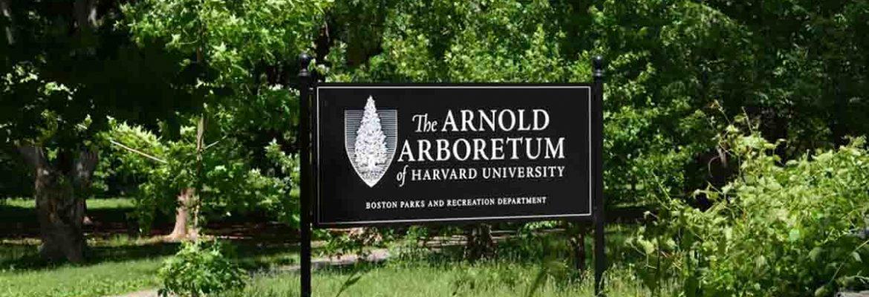 Arnold Arboretum of Harvard University, Boston,Massachusetts, USA