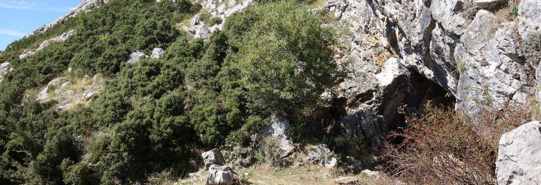 Corycian Cave, Delphi, Greece