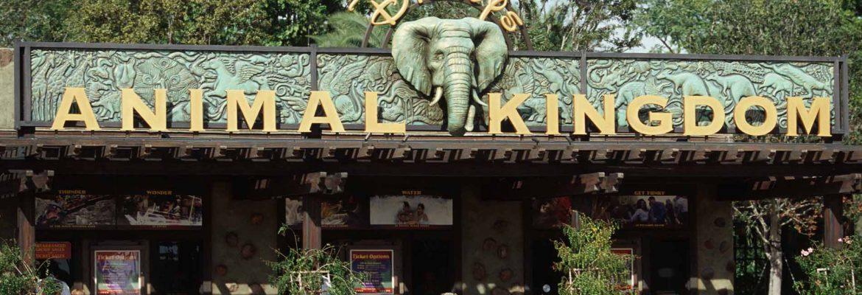 Disney's Animal Kingdom Theme Park,Orlando,Florida, USA