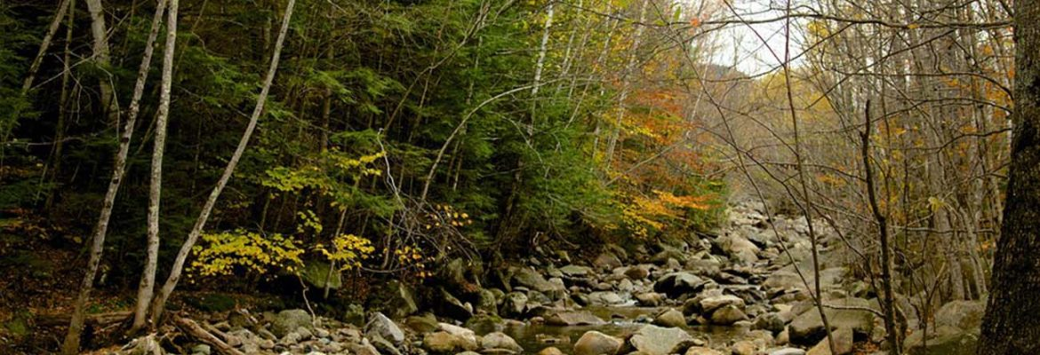 Lost River Gorge & Boulder Caves,North Woodstock, New Hampshire, USA