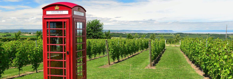 Luckett Vineyards, NS, Canada