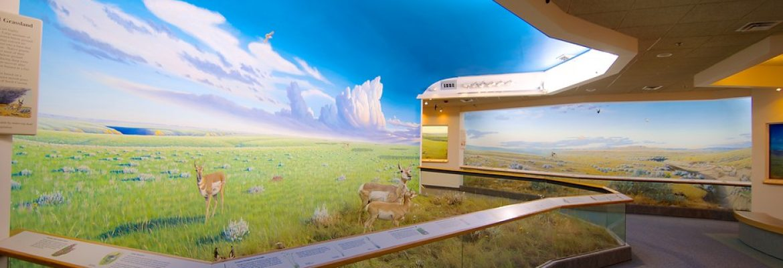 Royal Saskatchewan Museum,Regina, SK, Canada