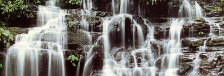 Los Katios National Park, Columbia