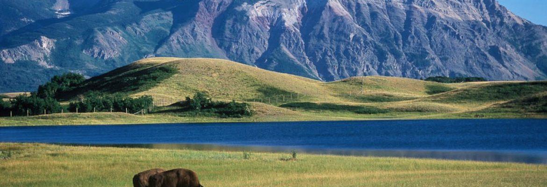 Waterton Glacier International Peace Park, Unesco, MT, Canada