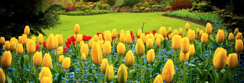 Queen Elizabeth Park,Vancouver, BC, Canada