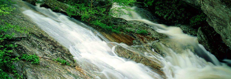 Pisgah National Forest,Nebo,North Carolina, USA