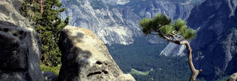 Yosemite Valley, Yosemite National Park,California, USA