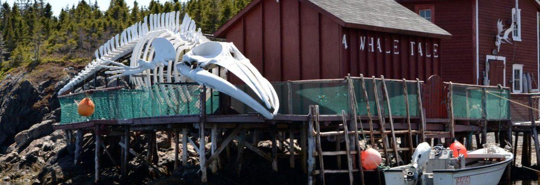 Prime Berth Fishing Museum,NL, Canada