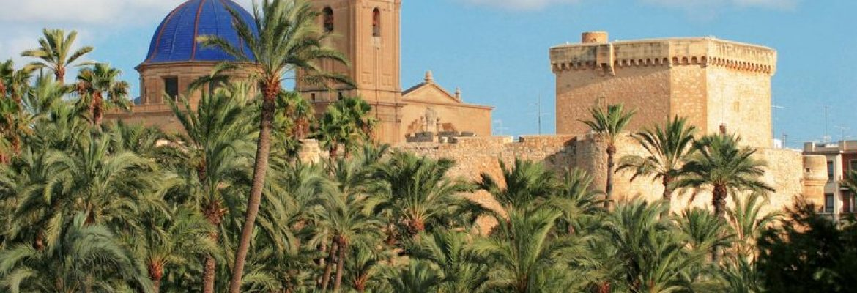 200,000 Palm Trees, Heritage Site, El Palmeral,Alicante, Spain