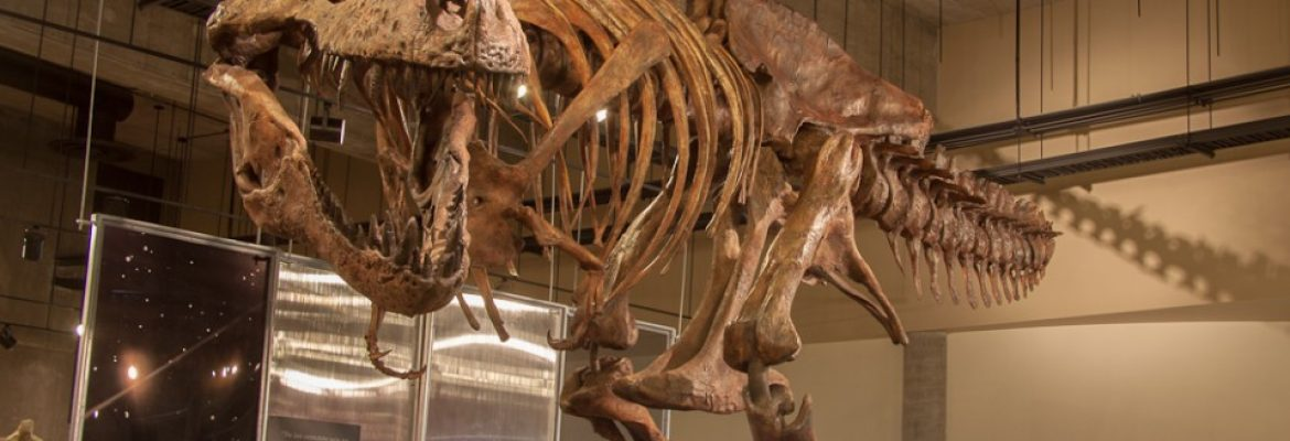 T.rex Discovery Centre, Eastend, SK, Canada