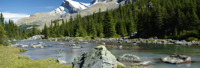 Hamber Provincial Park, Unesco,AB, Canada