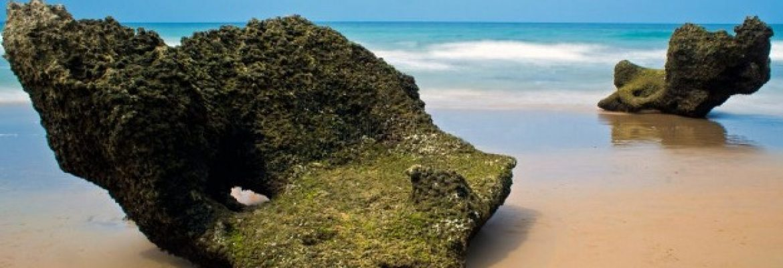 Beach of the Barrosa, Chiclana de la Frontera, Spain