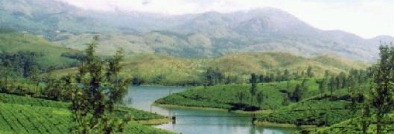 Kerala Region, India