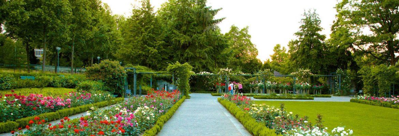 The Rose Garden,Bern, Switzerland