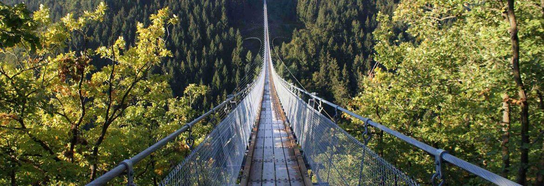 Geierlay Rope Bridge,Mörsdorf, Germany