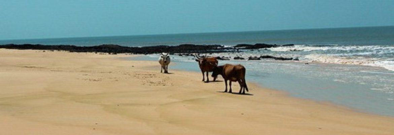 Varela, Guinea-Bissau
