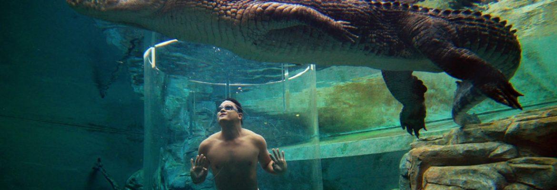 Crocosaurus Cove, Darwin, NT, Australia