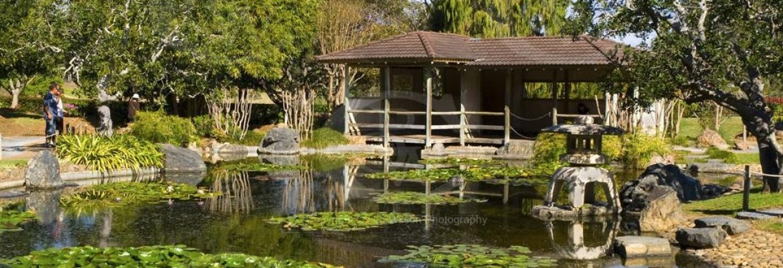 Botanic Gardens, QLD, Australia