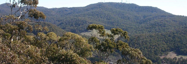 Mount Canobolas, NSW, Australia