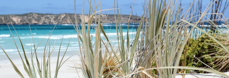Coffin Bay National Park, SA, Australia