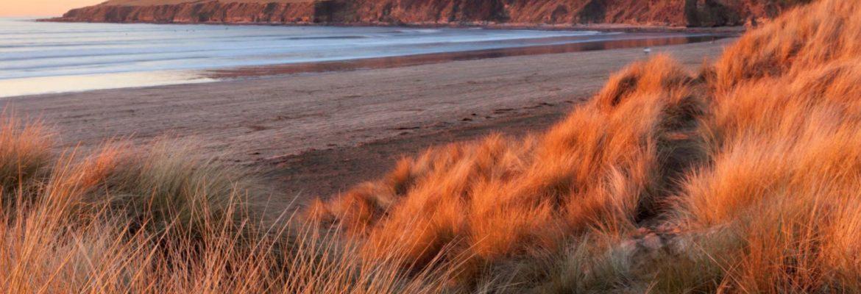 Saunton Sands The Largest Dunes in Britain, England