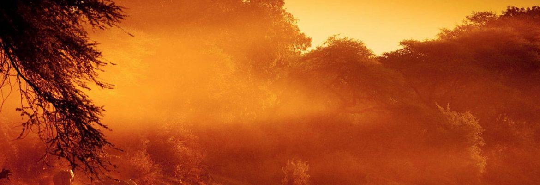 Zambezi National Park, Zimbabwe