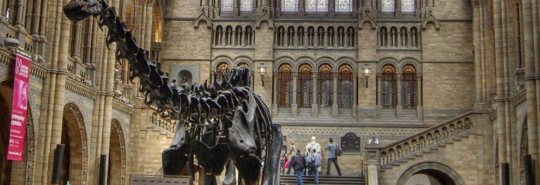Natural History Museum of Zimbabwe,Bulawayo, Zimbabwe