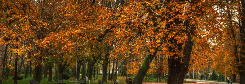 City Park, Yambol, Bulgaria