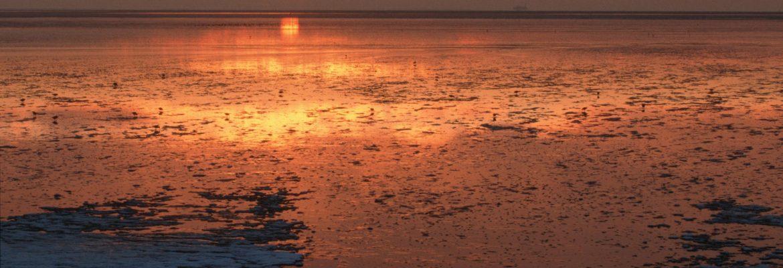 Wadden Sea, Germany