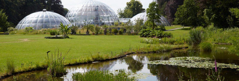 Botanical Garden, Zürich, Switzerland